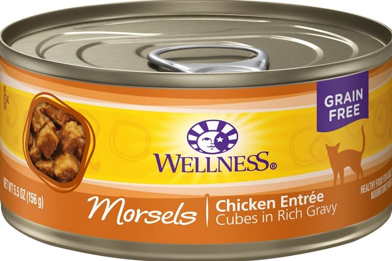 Wellness Cat Food Reviews 2020: Complete Brand Overview 7