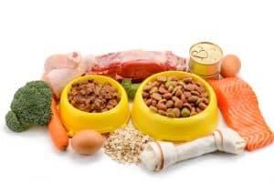 pet food formula
