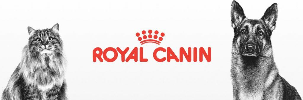 2021 Royal Canin Cat Food Review: Guides, Analysis & Reviews 1