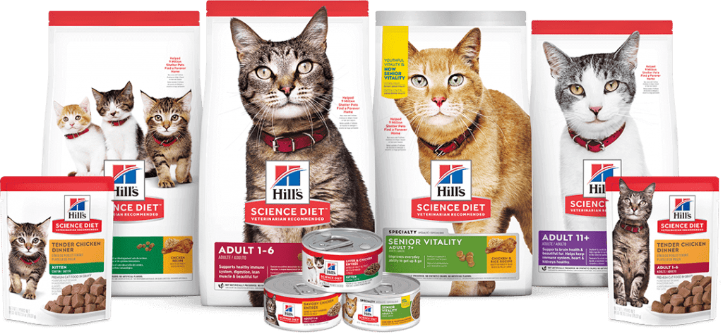 science diet cat food review