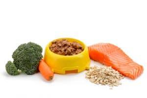 Bowl of organic pet food