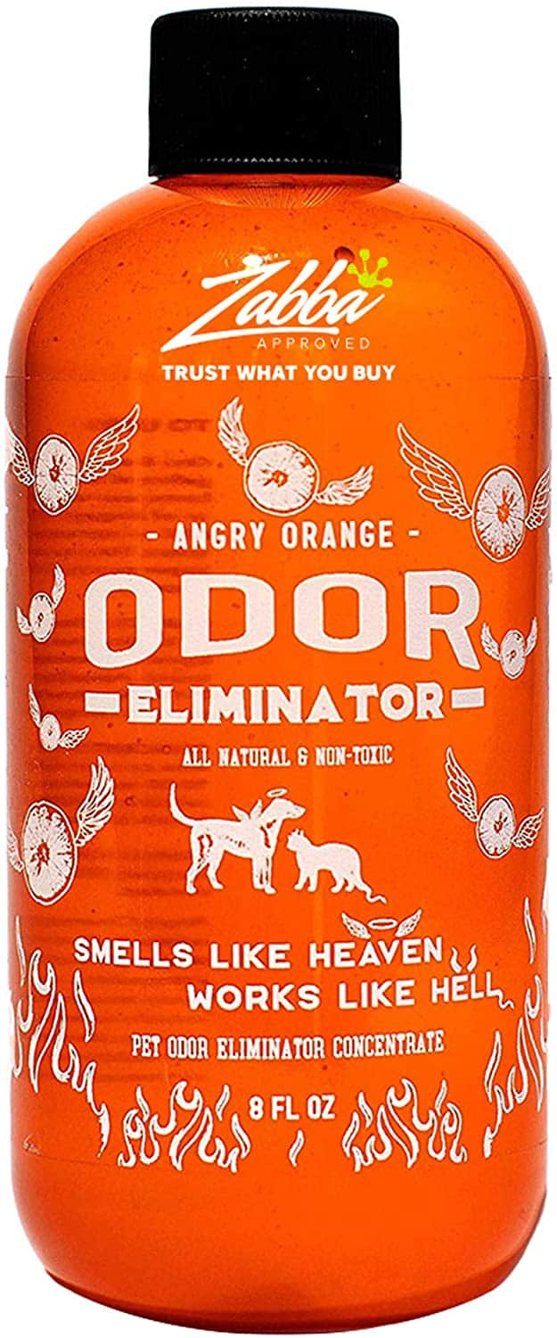 Bubba's Pet Stain And Odor Terminator Instructions : bubba's, stain, terminator, instructions, Urine, Remover, 2021:, Tracks
