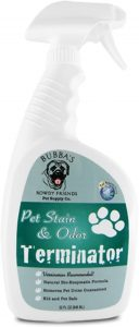 The Best Cat Urine Remover To Stop The Smell in Its Tracks 29