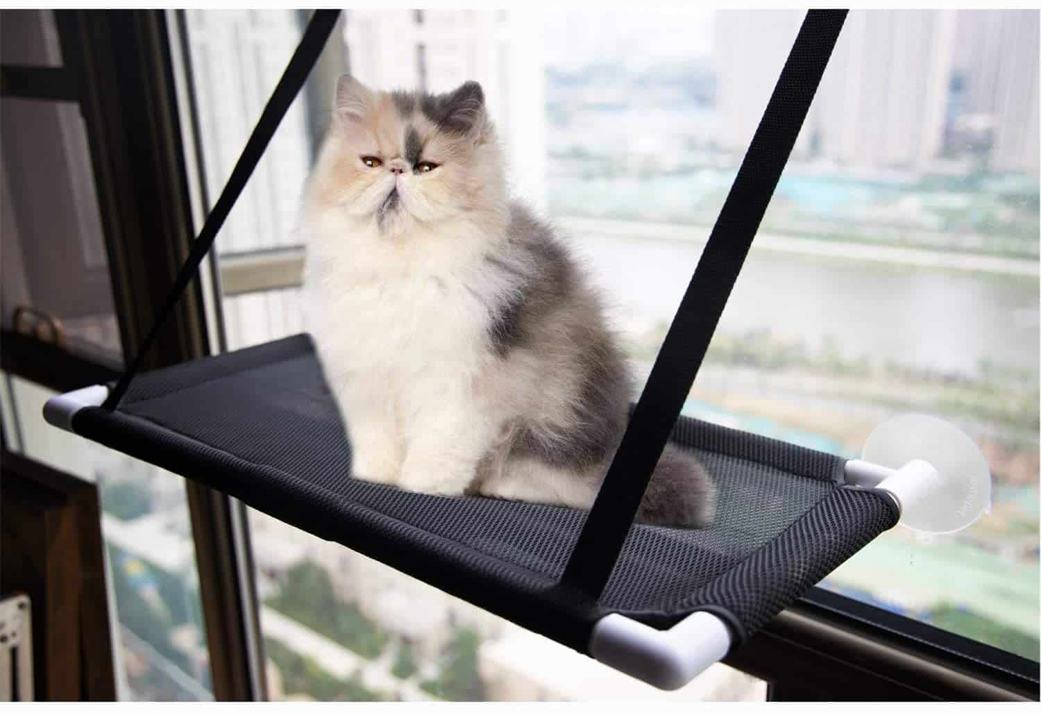 The Best Cat Window Perch of 2020: Exclusive for Felines Who Love Comfort 7