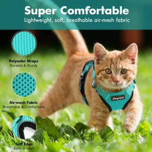 Best Cat Harnesses of 2021: A Comprehensive Guide 14
