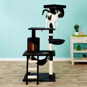 Best Cat Scratching Post: Comprehensive Reviews and Buyer Guide for 2020 16