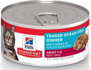 2020 Science Diet Cat Food Review: Vet-Approved Nutrition For Your Cat 16