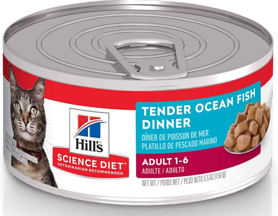 2021 Science Diet Cat Food Review: Vet-Approved Nutrition For Your Cat 5