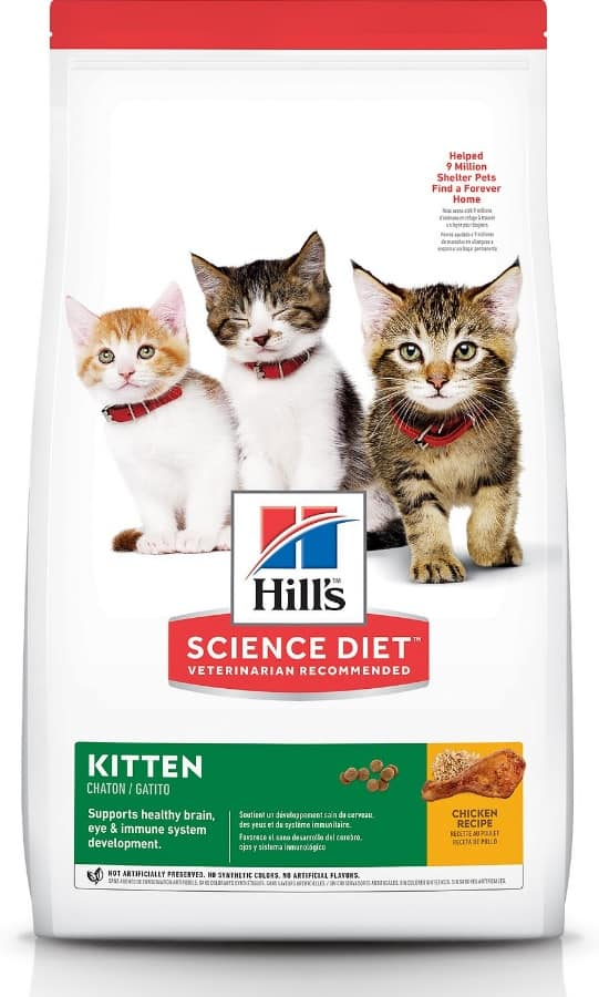 2021 Science Diet Cat Food Review: Vet-Approved Nutrition For Your Cat 2
