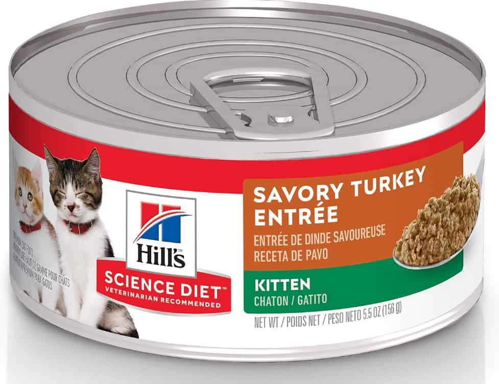 2021 Science Diet Cat Food Review: Vet-Approved Nutrition For Your Cat 3
