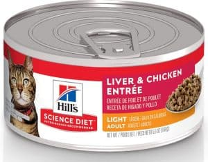2020 Science Diet Cat Food Review: Vet-Approved Nutrition For Your Cat 22