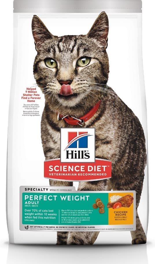 2021 Science Diet Cat Food Review: Vet-Approved Nutrition For Your Cat 10