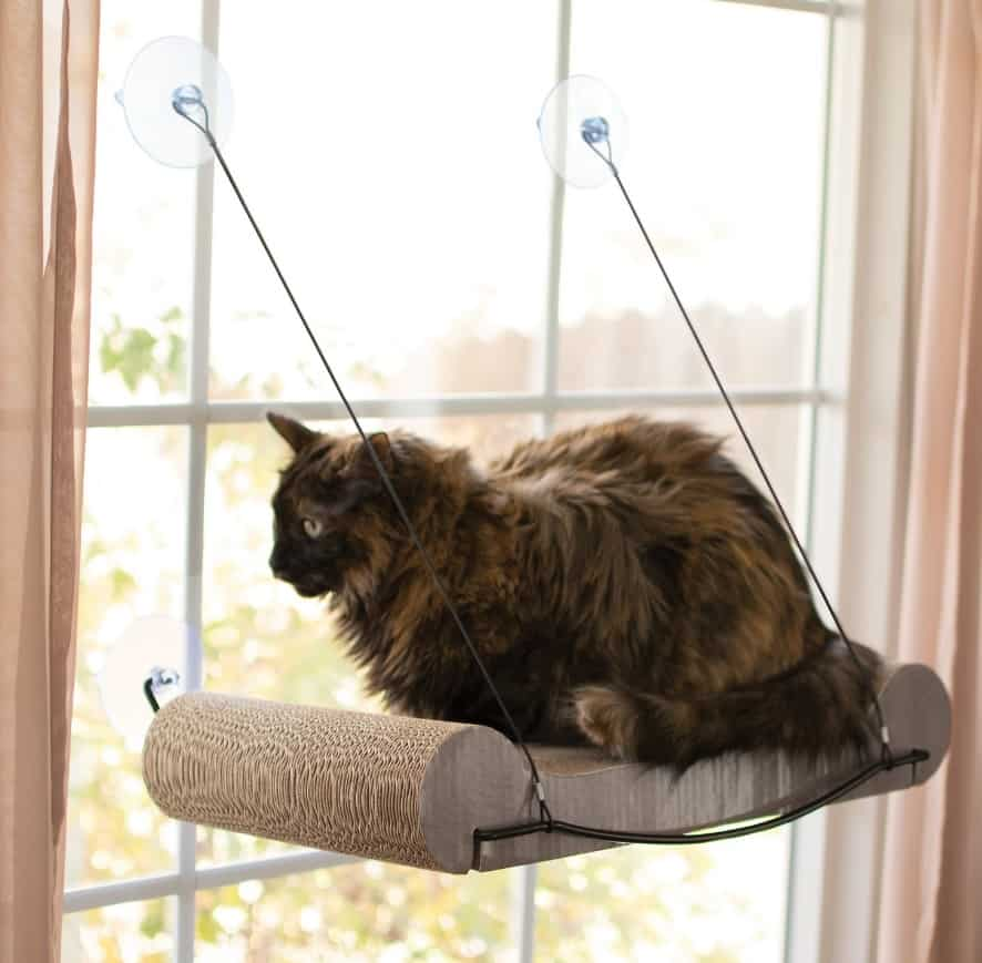 The Best Cat Window Perch of 2020: Exclusive for Felines Who Love Comfort 2