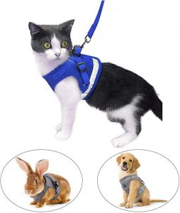Best Cat Harnesses of 2021: A Comprehensive Guide 16