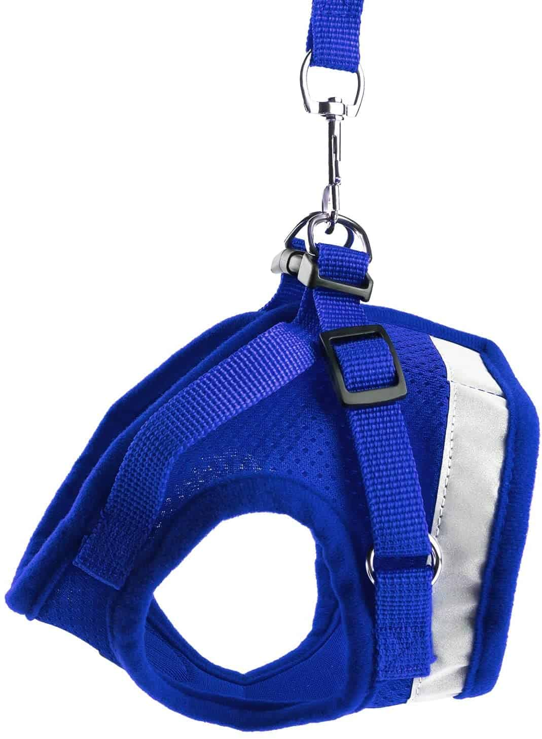 Best Cat Harnesses of 2021: A Comprehensive Guide 4