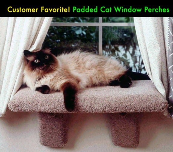 The Best Cat Window Perch of 2020: Exclusive for Felines Who Love Comfort 19