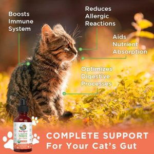 What You Need To Know About Probiotics For Cats 17
