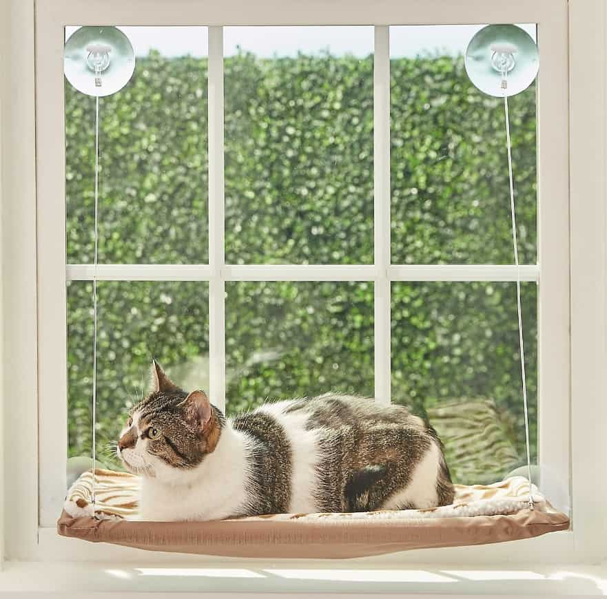 The Best Cat Window Perch of 2020: Exclusive for Felines Who Love Comfort 3