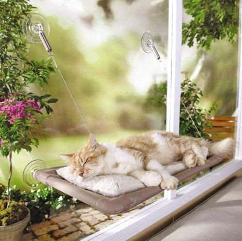 The Best Cat Window Perch of 2020: Exclusive for Felines Who Love Comfort 5