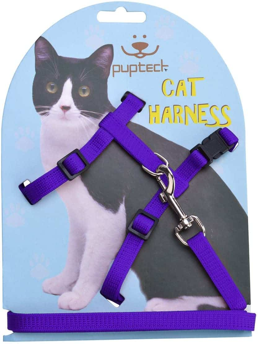 Best Cat Harnesses of 2021: A Comprehensive Guide 7