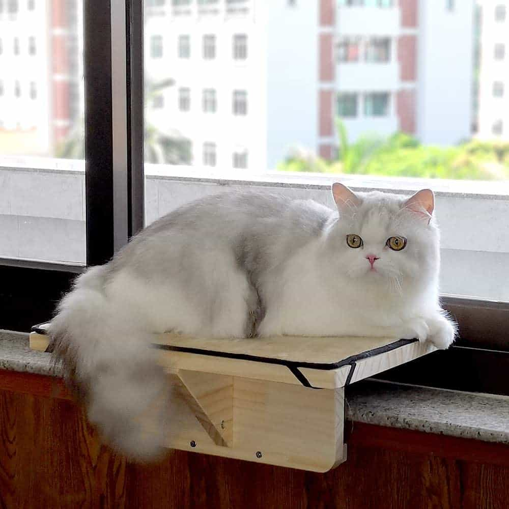 The Best Cat Window Perch of 2020: Exclusive for Felines Who Love Comfort 18