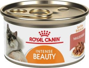 2020 Royal Canin Cat Food Review: Guides, Analysis and Reviews Explained 19
