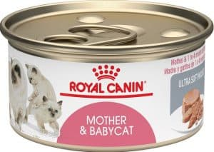2020 Royal Canin Cat Food Review: Guides, Analysis and Reviews Explained 14