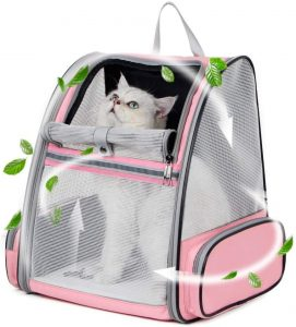 Best Cat Backpacks 2020: Examples, Buying Guide and How To Use 29