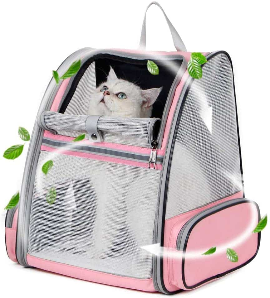 Best Cat Backpacks [year]: Complete Buying Guide 29
