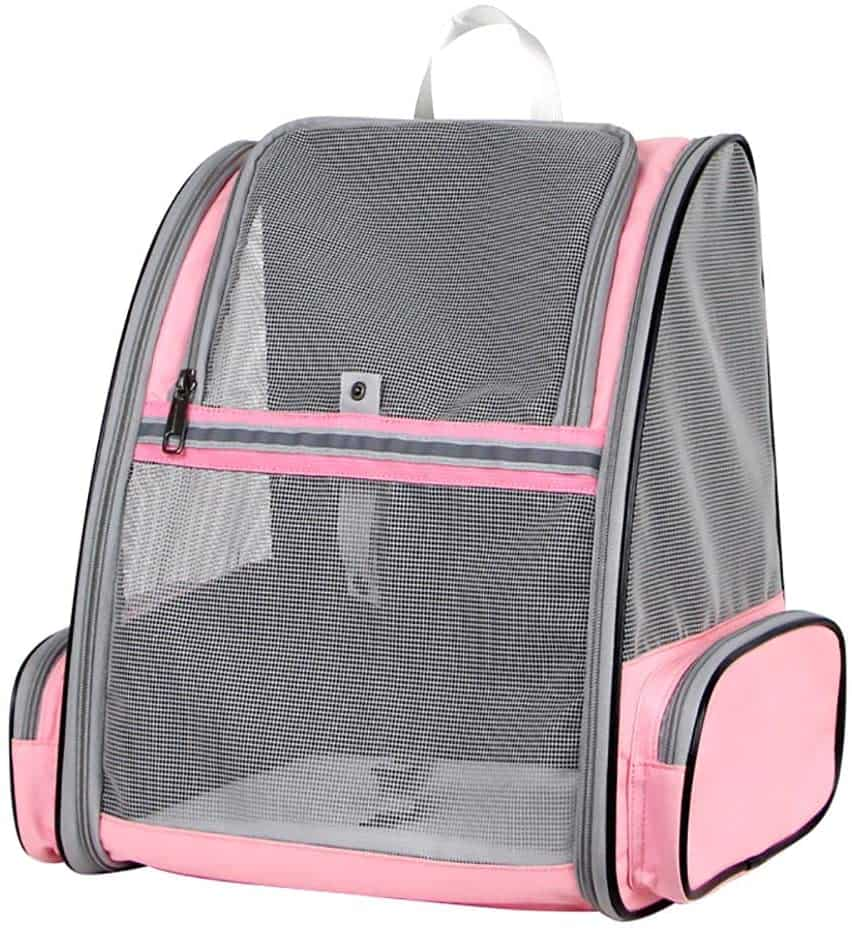 Best Cat Backpacks 2020: Examples, Buying Guide and How To Use 21