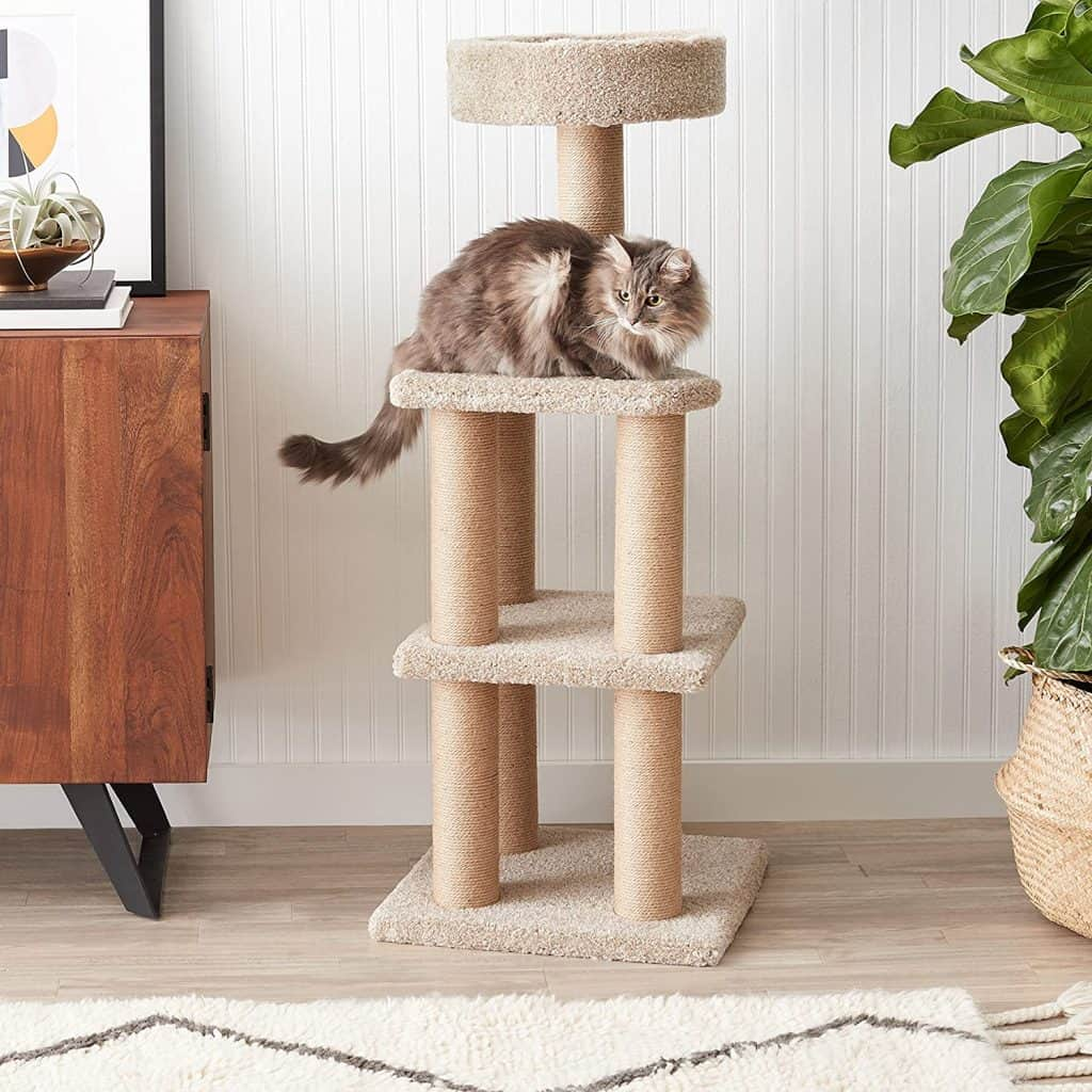 Best Cat Scratching Post: Comprehensive Reviews and Buyer Guide for 2021 18