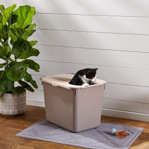 5 Best Top Entry Litter Box for Cats: 2020 Ultimate Guide 17
