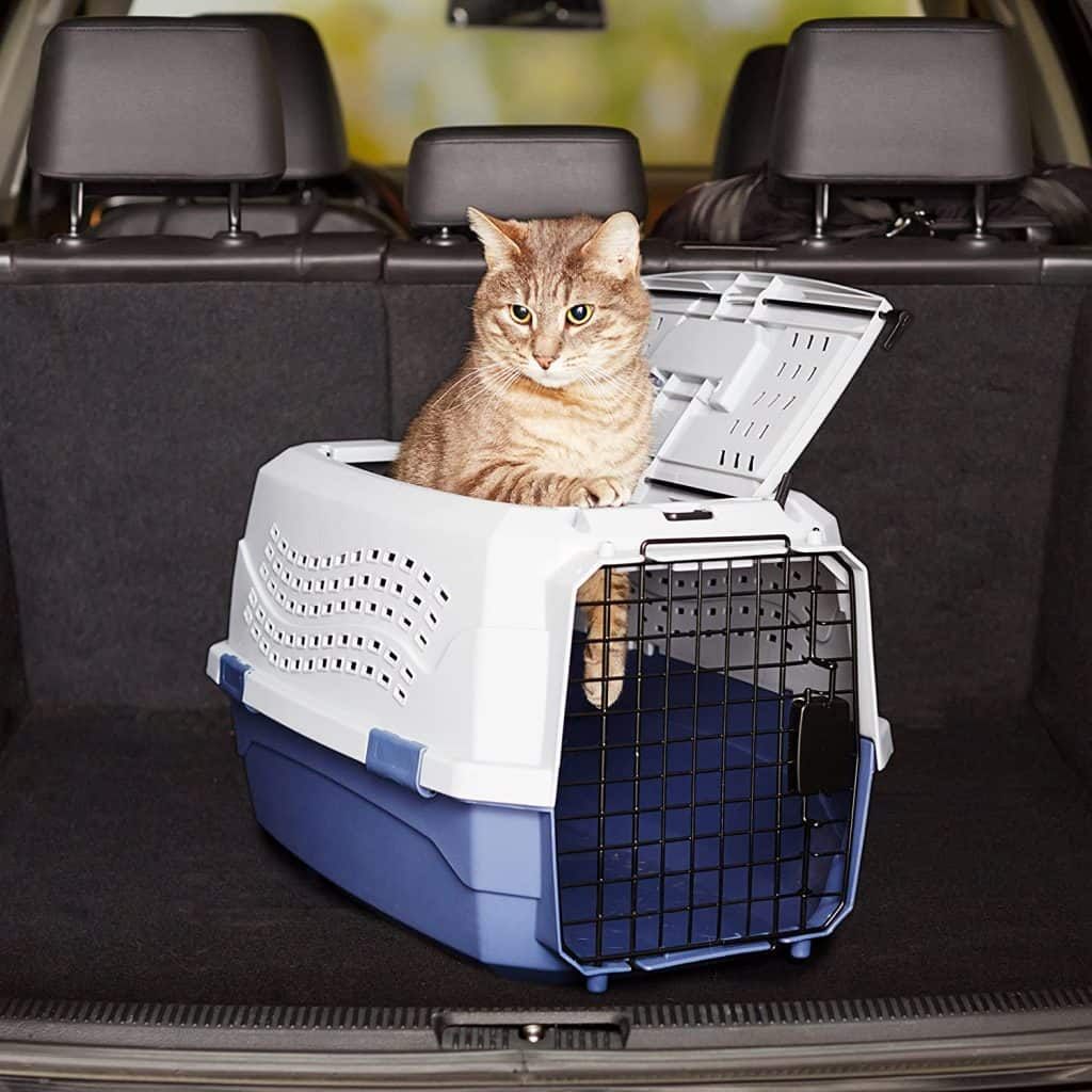 The Best Cat Carriers for 2021: Which Are They? 16