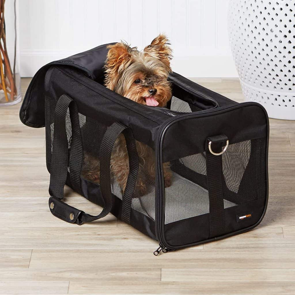 The Best Cat Carriers for 2021: Which Are They? 9