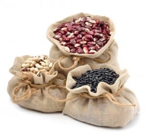 Can Cats Eat Beans: Top Key Points Every Owner Should Know 2
