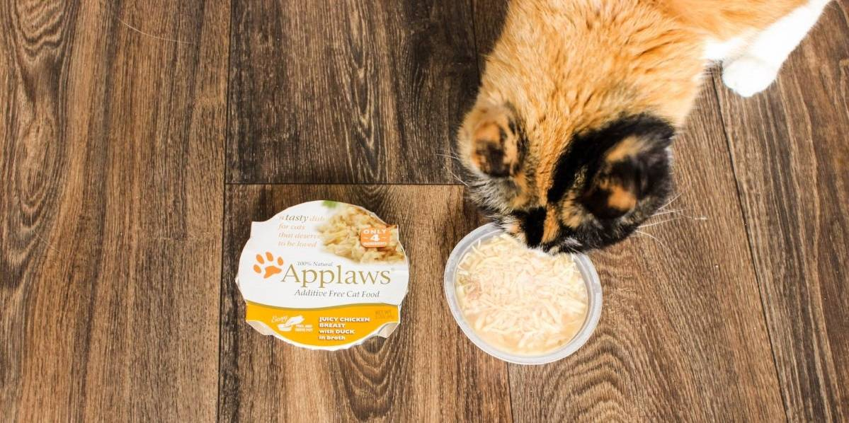 2020 Applaws Cat Food Reviews: Naturally Nutritious Cat Food 14