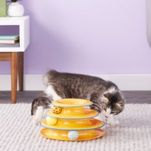 Best Interactive Cat Toys - Automatic Toys For Your Feline! 14