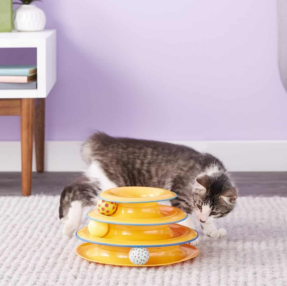 Best Interactive Cat Toys - Automatic Toys For Your Feline! 13