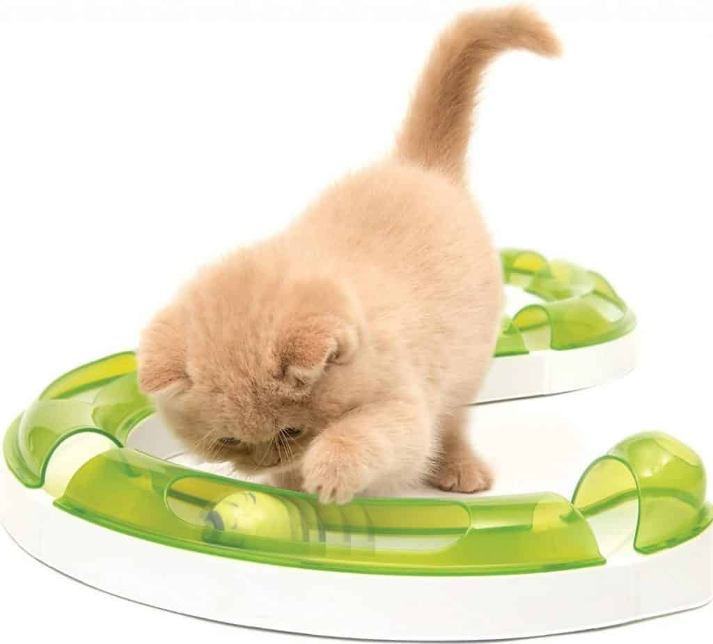 Best Interactive Cat Toys - Automatic Toys For Your Feline! 22