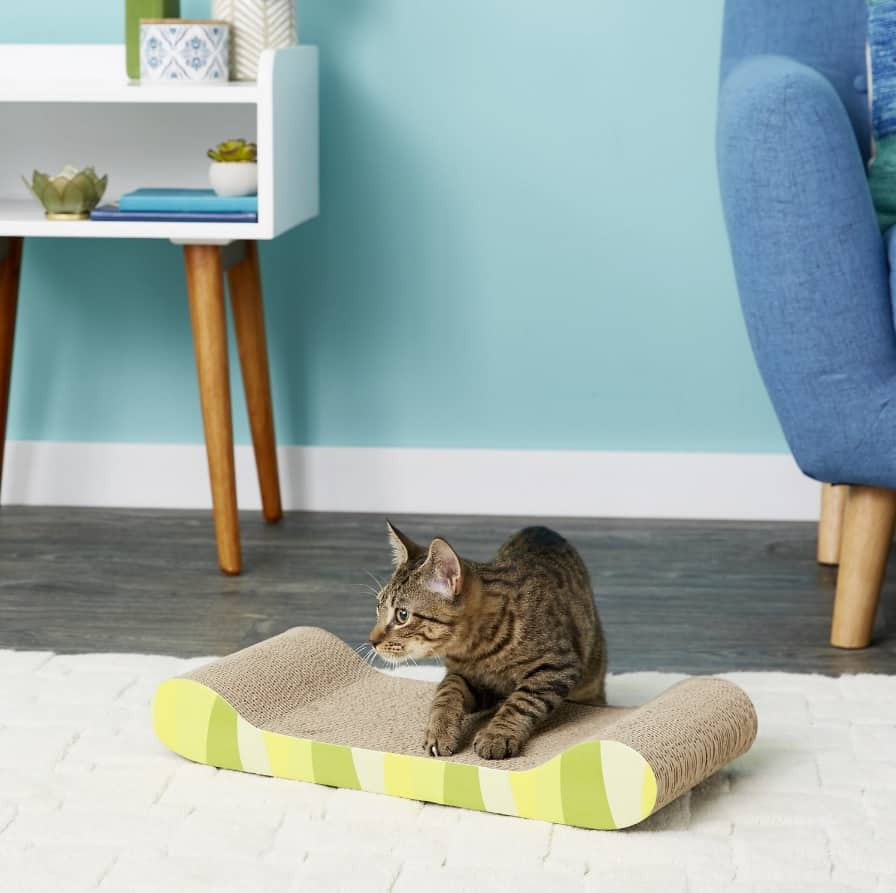 Best Cat Scratching Post: Comprehensive Reviews and Buyer Guide for 2021 31