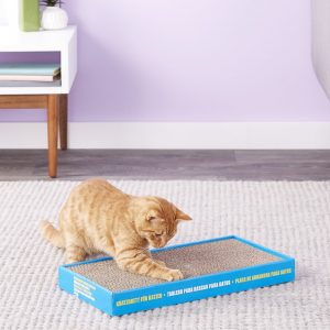 Best Cat Scratching Post: Comprehensive Reviews and Buyer Guide for 2020 31