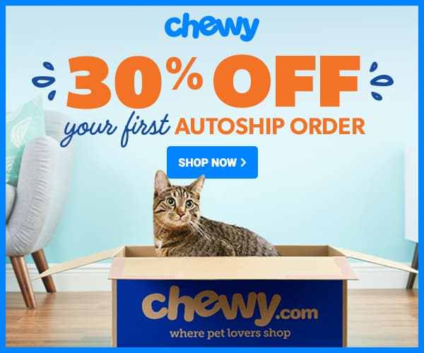 The 5 Best Cat Chew Toys in 2021: Buyer's Guide and Reviews 1