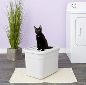 5 Best Top Entry Litter Box for Cats: 2020 Ultimate Guide 9