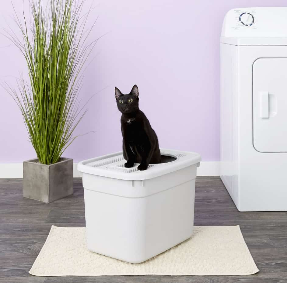 5 Best Top Entry Litter Box for Cats: 2021 Ultimate Guide 9