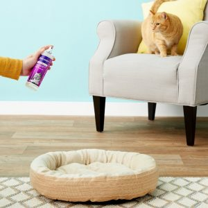 6 Best Cat Calming Spray in 2020: A Buyer's Guide and Review 13