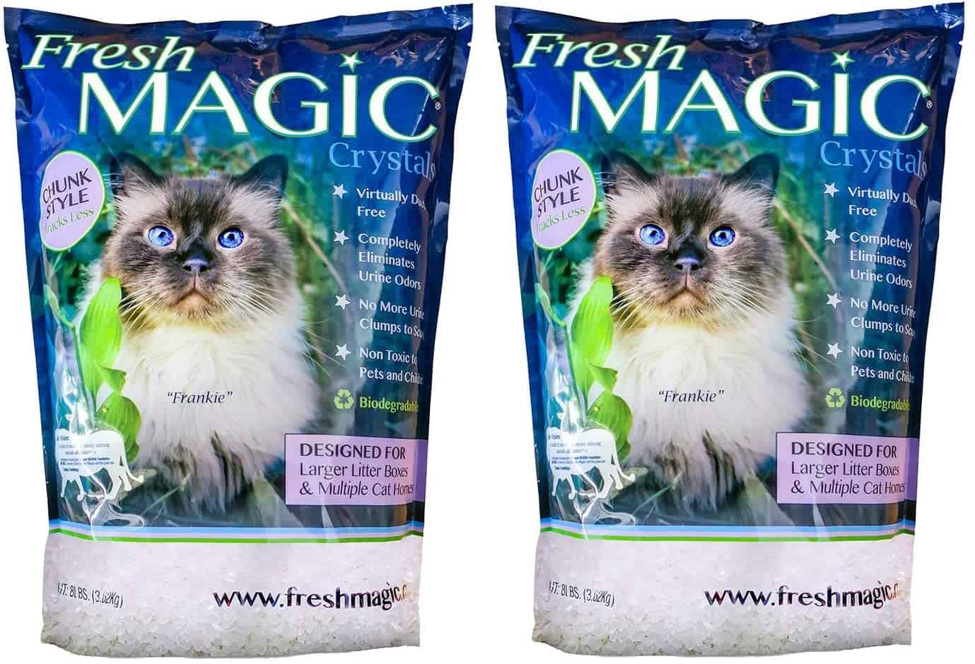 Best Crystal Cat Litter for 2021: Reviews and Buyer's Guide 4