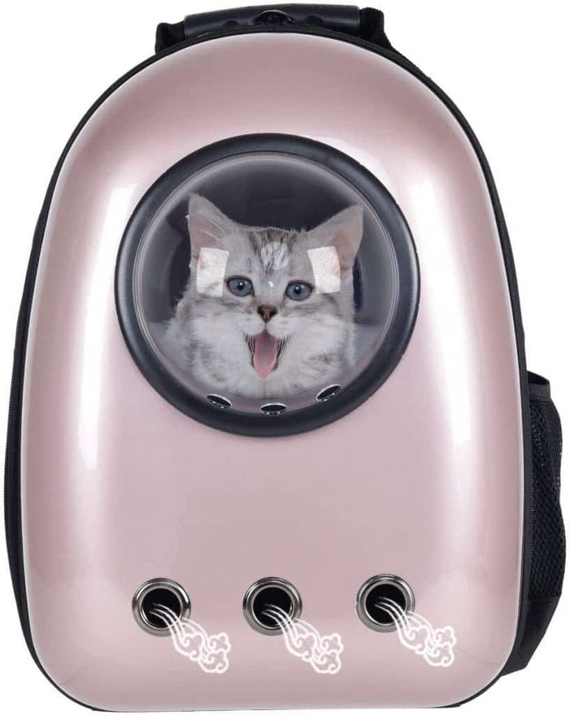 Best Cat Backpacks [year]: Complete Buying Guide 14