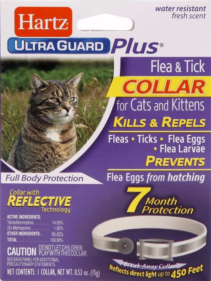 Best Cat Flea Collars for 2021: 7 Top Products to Get Rid of Pests 3