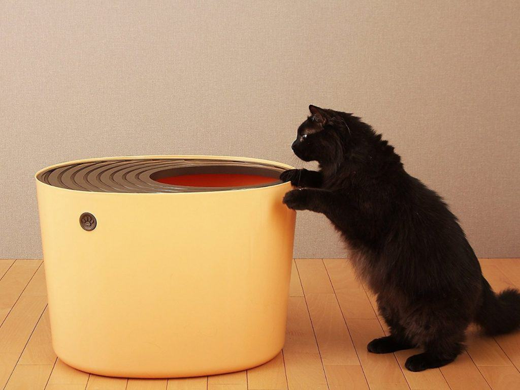 5 Best Top Entry Litter Box for Cats: [year] Ultimate Guide 13