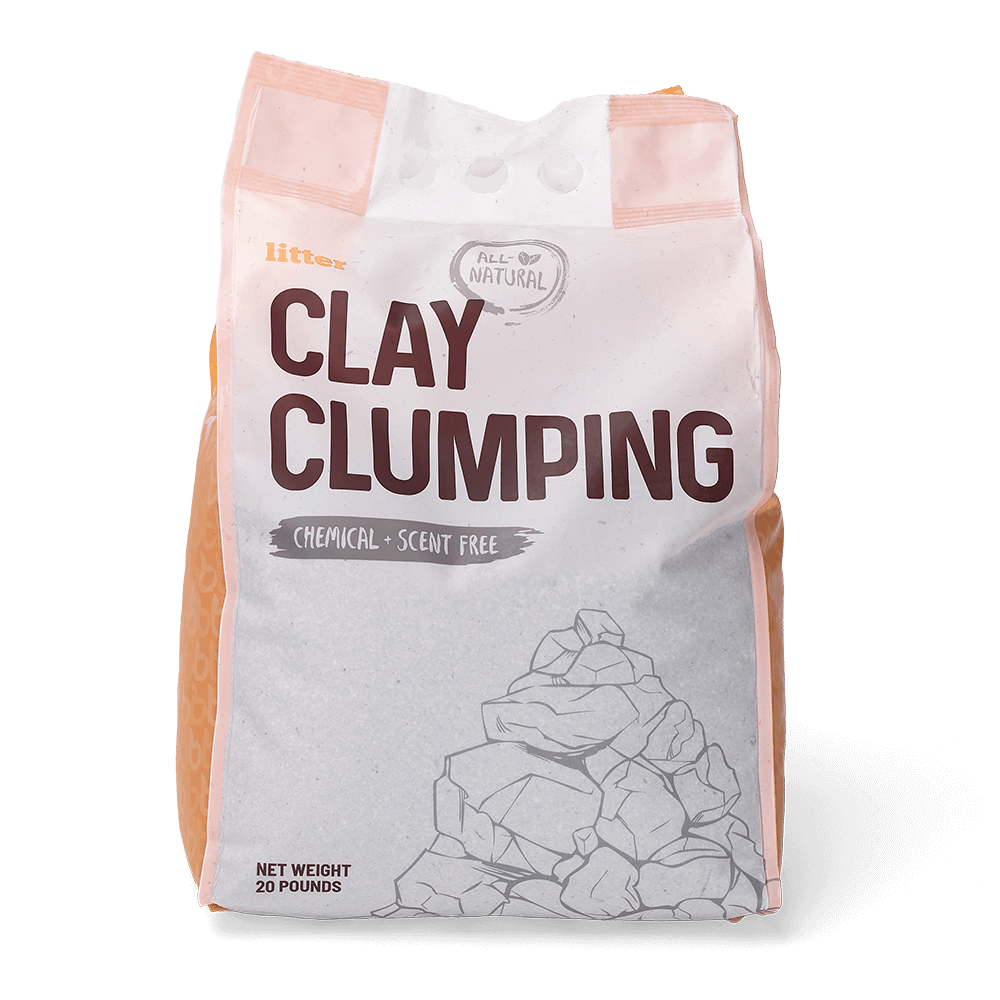 10 Best Clumping Cat Litters: Buyer's Guide & Reviews 10